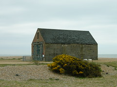 Dilapidated house close to Winchelsea Beach