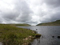 View to Burnmoor Lodge