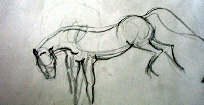 Horse - charcoal sketch
