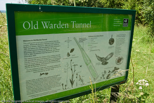 Bedfordshire - Old Warden Tunnel Nature Reserve _G106331