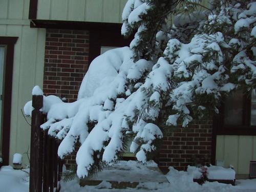 The way to my front door