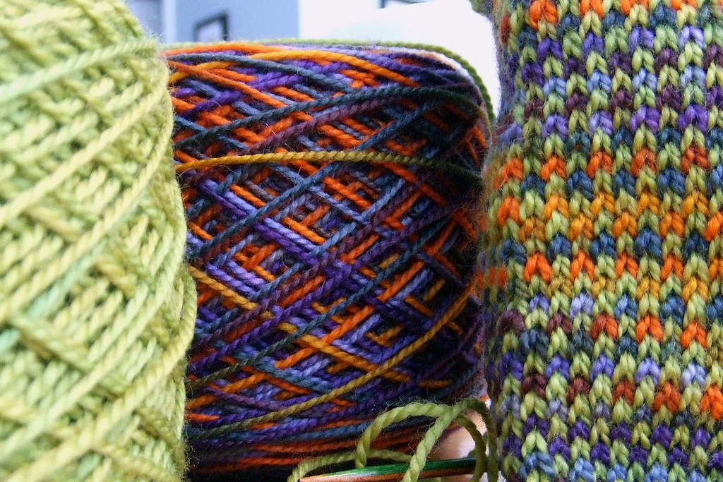 090202_parrot yarn leg