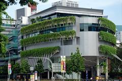 SMU School of Accountancy