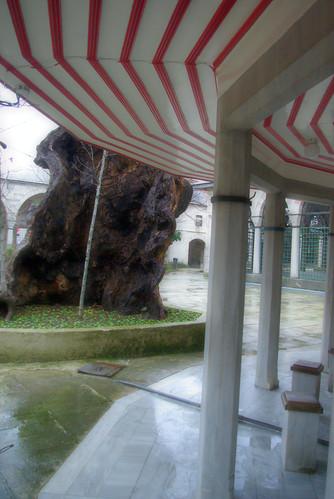 Validei Atik Mosque, Validei Atik Camii, Üsküdar, İstanbul, Pentax K10d