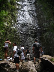 Day 096 - Manoa Falls Hike