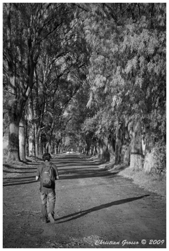 """Caminante no hay camino, se hace camino al andar • <a style=""""font-size:0.8em;"""" href=""""http://www.flickr.com/photos/20681585@N05/3227550366/"""" target=""""_blank"""">View on Flickr</a>"""