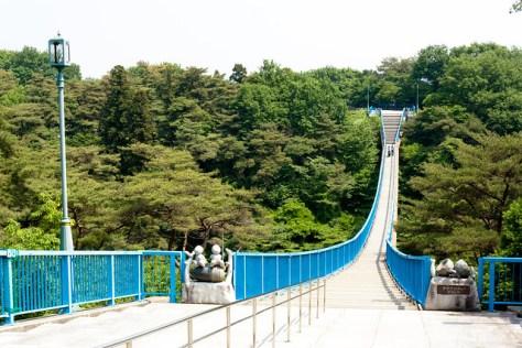#3 The Giant Camphor of Hachimanyama