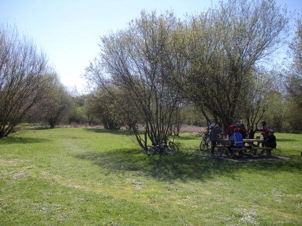 Foto 7 - Zona de descanso en Salburua