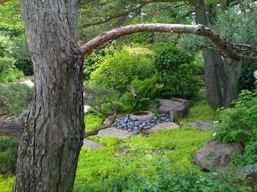 CBG Japanese garden 2