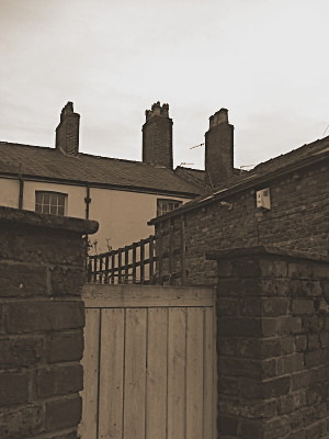Back of the cottages from the main road