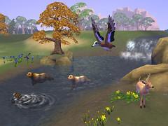 riverridgebirdseye_bmp_jpgcopy