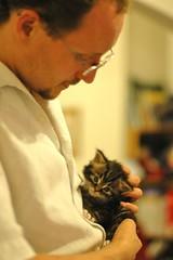 Owen & kitten