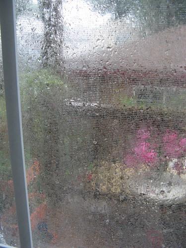 consistent torrential rain