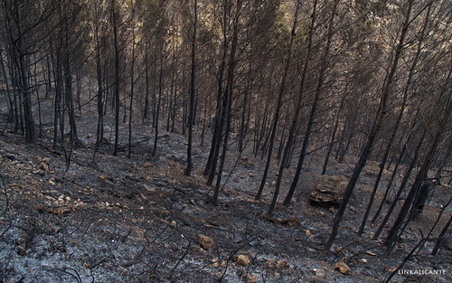 Incendio en Puig Campana y Ponoig