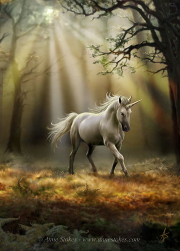 Glimpse of a Unicorn by Anne Stokes