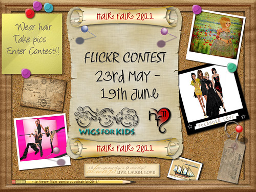 Hair Fair 2011 Flickr Contest