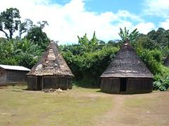 Dwellings in Cameroon
