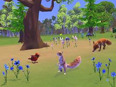 grassyglen_squirrelfox02