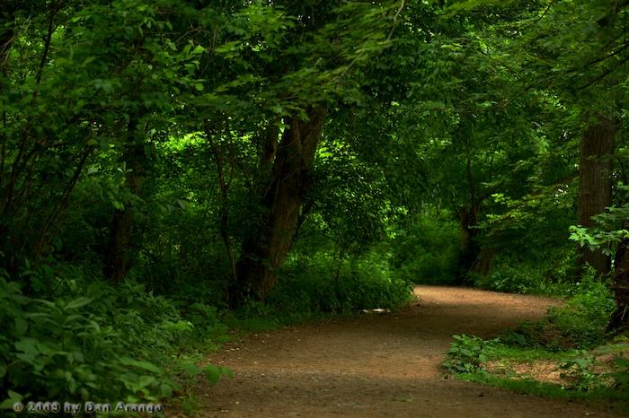 Reverbend Path