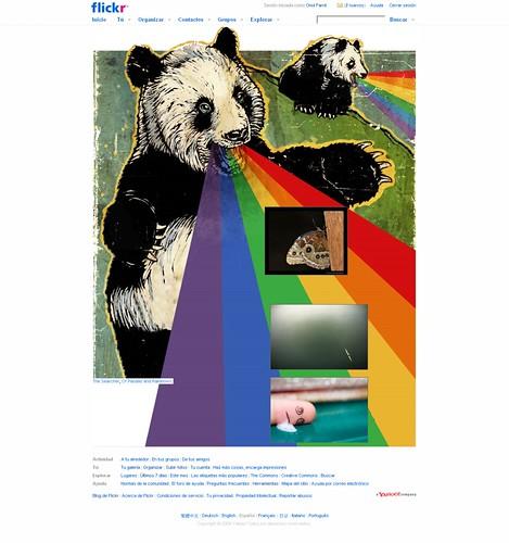 Flickr- Panda (20090211)