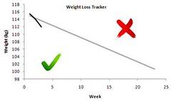 weight loss tracker week 2