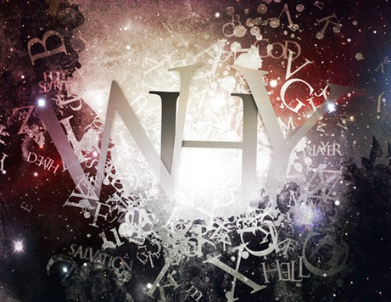 """""""WHY"""" series graphic"""