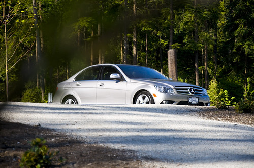 Wild Pine Trees of Stanley Park contrasts well against the C300s silver
