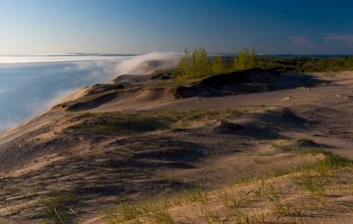 vast sandy wilds
