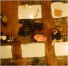 2009/03/21 Self Portrait in a Mirror