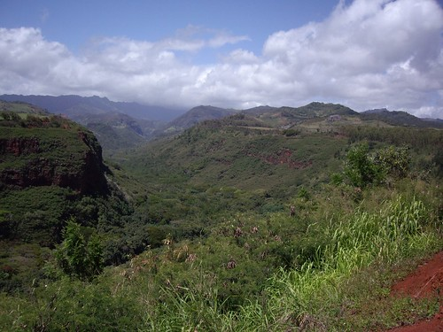 MORE OF WAIMEA CANYON