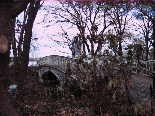 Central Park, some bridge