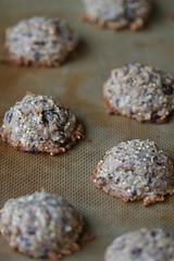 Cinnamon-Coconut Chocolate Chunk Cookie 6