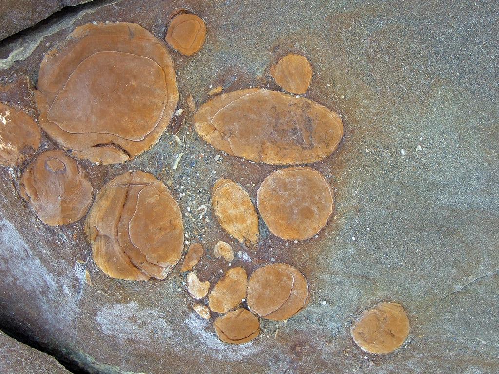 circulos piedra