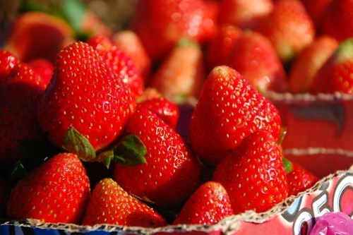 Strawberry from Benguet