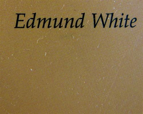 Edmund White, Ritratto di Marcel Proust, Lidau 2010; copertina di Dada Effe: quarta di copertina (part.), 1
