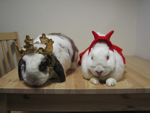 princess betsy and devil gus