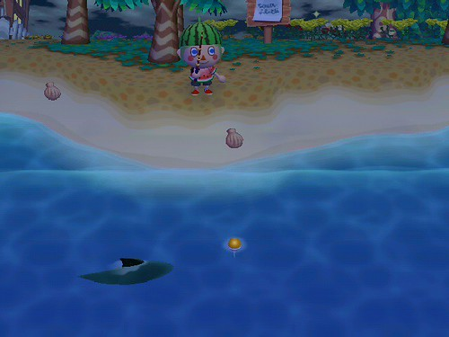 Here Sharky Sharky!