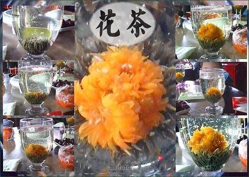 花茶 : Flowering tea : Teeblume