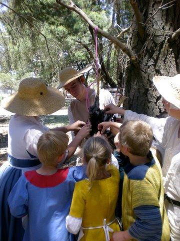 plucking surveying expedition