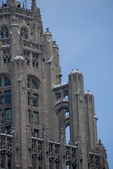 Detail of Tribune Tower, Chicago