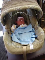 Raffa/car seat