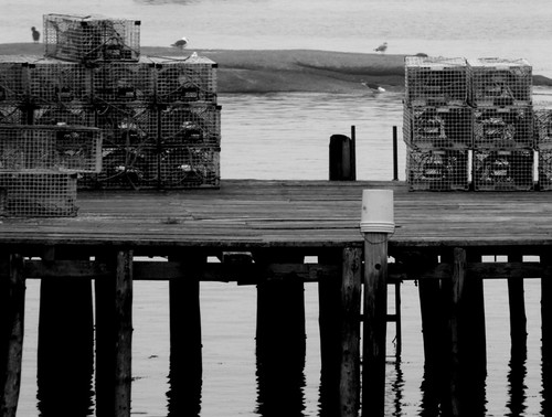 Lobster Traps - Stonington, ME