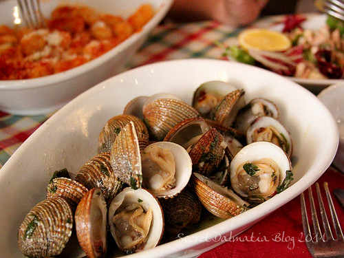 "The ""Hvaranin"" clams"