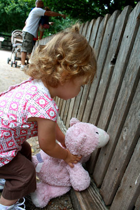 She always had to make sure Pink Bear could see