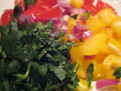 Cilantro, Red Onion, Yellow Pepper and Cilantro