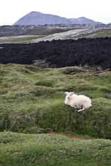 Islanda - Krafla
