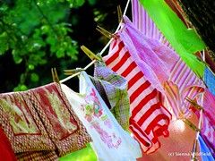Cothesline in the summer time