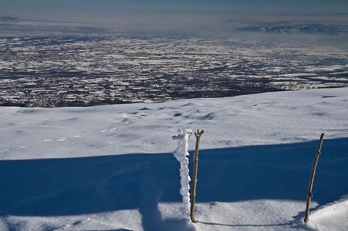 Le imitazioni della neve