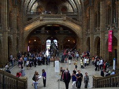 Darwins view, Natural History Museum, London