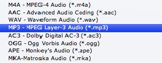 ipod formats